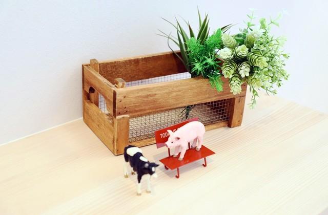 もみの木ハウス・かごしま 南九州市頴娃町にて「小屋裏部屋のあるコンパクトな平屋」の完成体感会