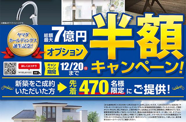 ヤマダレオハウス ヤマダホールディングス誕生記念「総額最大7億円オプション半額キャンペーン」を開催