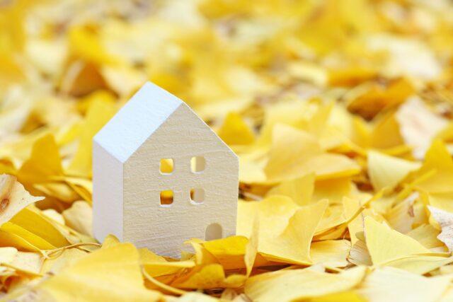 鹿児島で自然素材の家を建てる