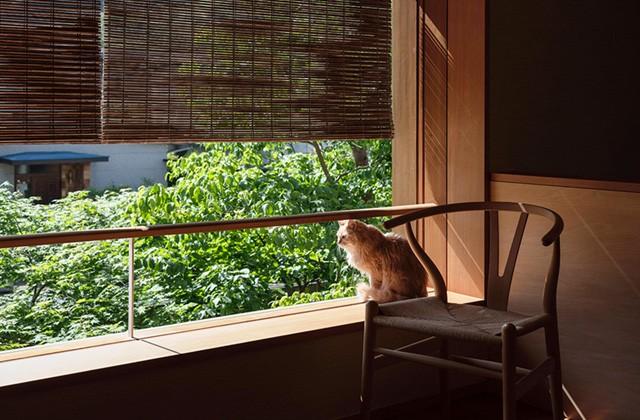 ベガハウス みちくさの家 事例写真08